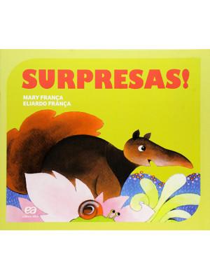 Coleção Gato e Rato – Surpresas! (Eliardo França / Mary França)