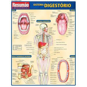 Resumão – Sistema Digestório