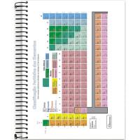 Caderno Universitário - 12 Matérias - Four Young 3