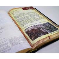 Bíblia de Estudo Arqueológica - NVI - Luxo Preto