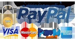 Pagamento Seguro Com PayPal